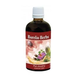 Borelio Herbs 100ml borelioza rdestowiec japoński korzeń szczeci vilcacora korzeń żeń-szenia czystek